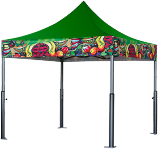 Picture of Tents : X-PERT V3 : Solid Top w/ Printed Valance : 10'x10'